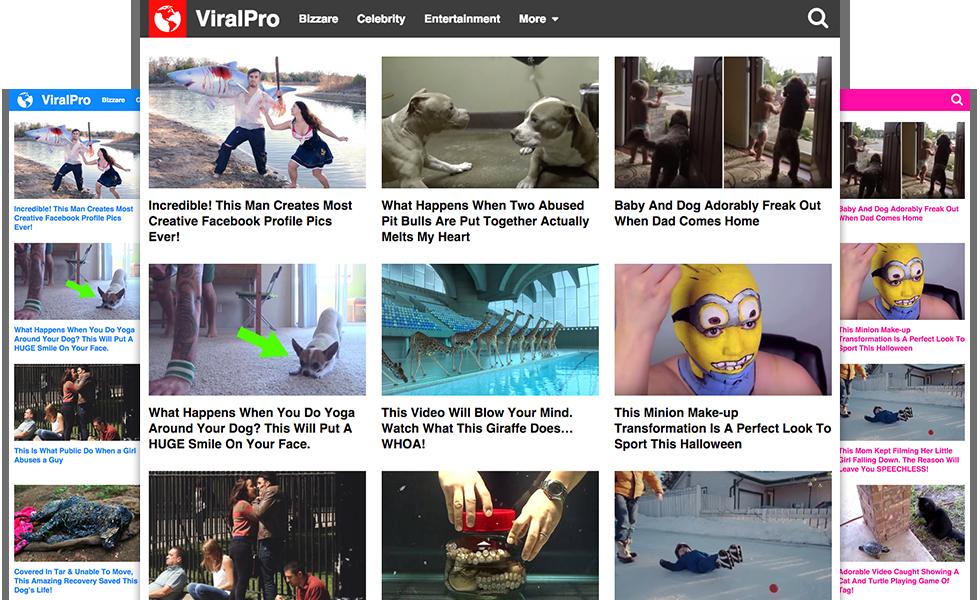 viralpro theme review
