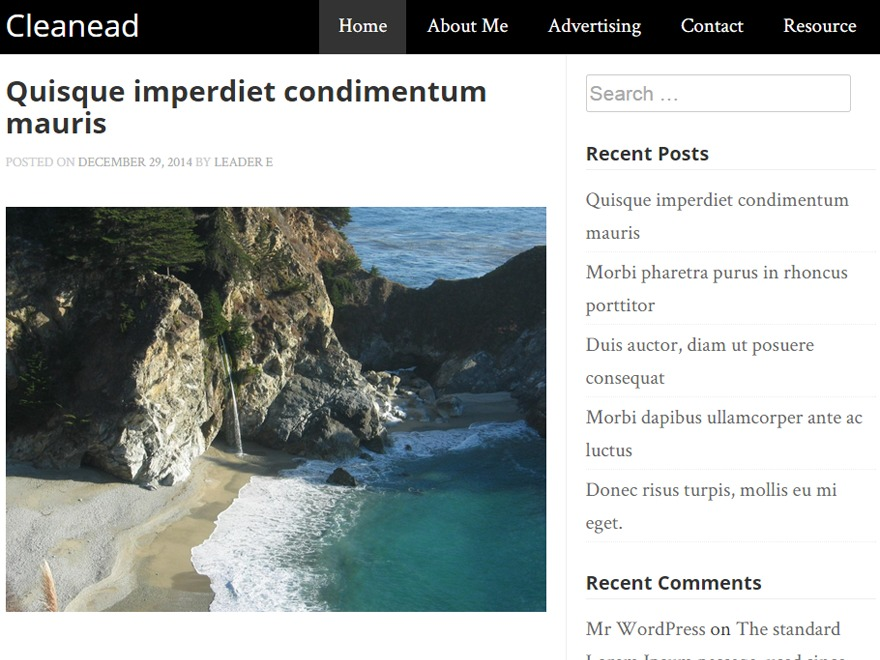 best-wordpress-themes-for-travel-blogging-sites-cleanead