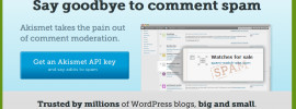 minimize wordpress comment spam