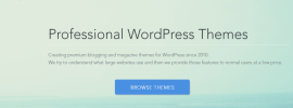 magazine3-review-premium-wordpress-themes